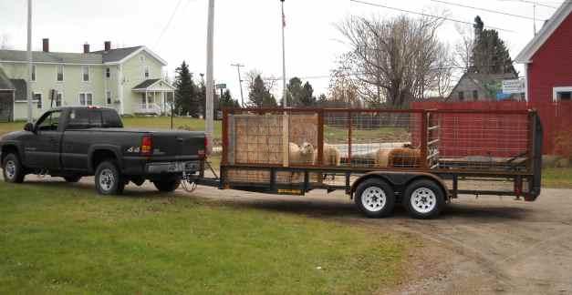 how to build homemade trailer